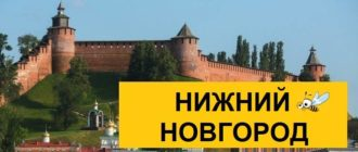 Тарифы Билайн для Нижнего Новгорода в 2020 году