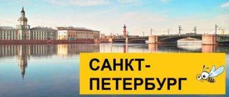Тарифы Билайн для Санкт-Петербурга в 2020 году