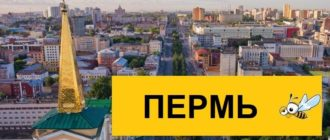 Тарифы Билайн для Перми в 2020 году
