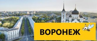 Тарифы Билайн для Воронежа в 2020 году