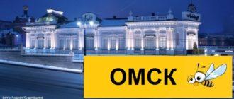 Тарифы Билайн для Омска в 2020 году