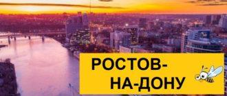Тарифы Билайн для Ростова-на-Дону в 2020 году