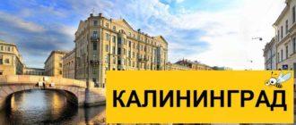 Тарифы Билайн для Калининграда в 2020 году