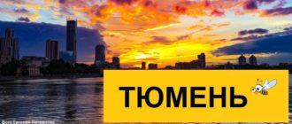 Тарифы Билайн для Тюмени в 2020 году